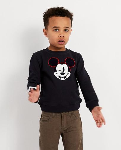 Sweater mit Print, 2-7 Jahre